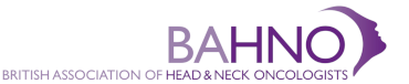 bahno logo intital colour footer